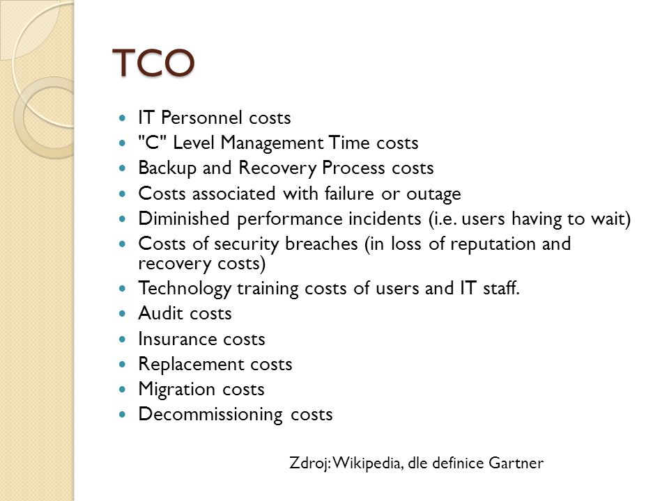 TCO IT Personnel costs C Level Management Time costs