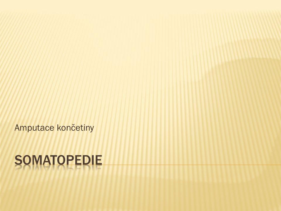 Amputace končetiny Somatopedie