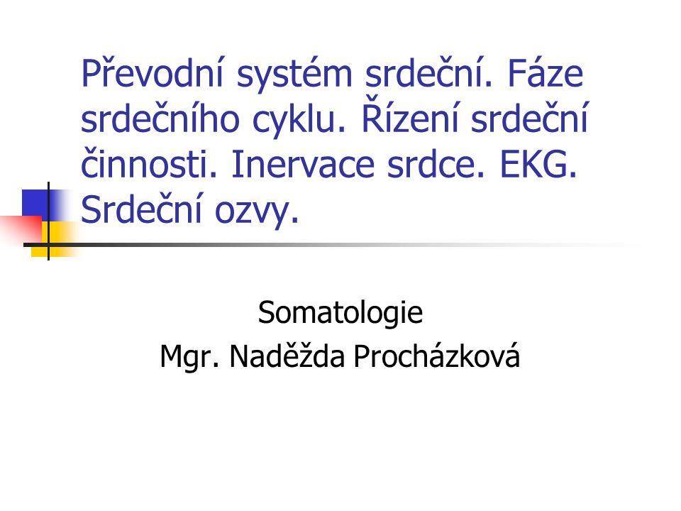 Somatologie Mgr. Naděžda Procházková