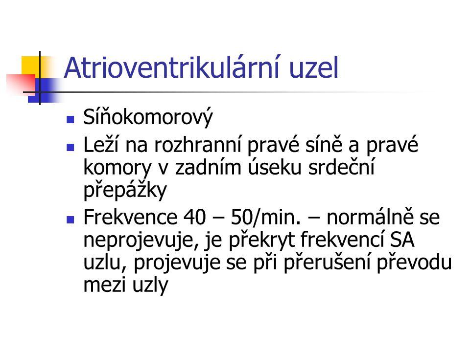 Atrioventrikulární uzel
