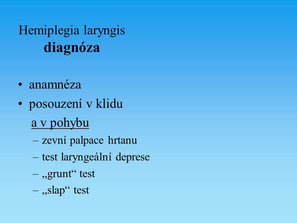 Hemiplegia laryngis diagnóza