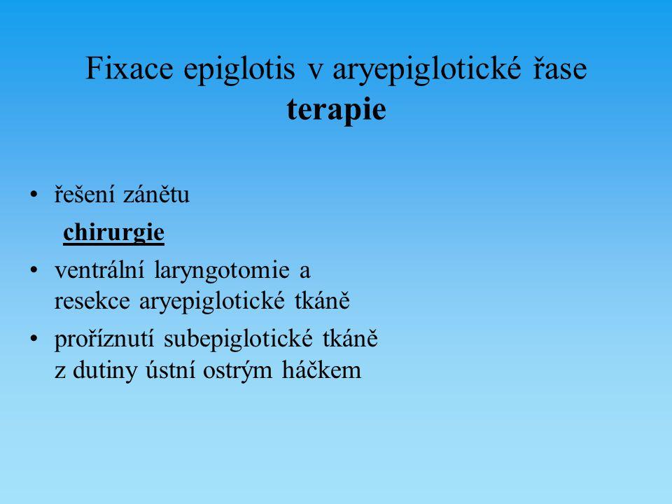 Fixace epiglotis v aryepiglotické řase terapie