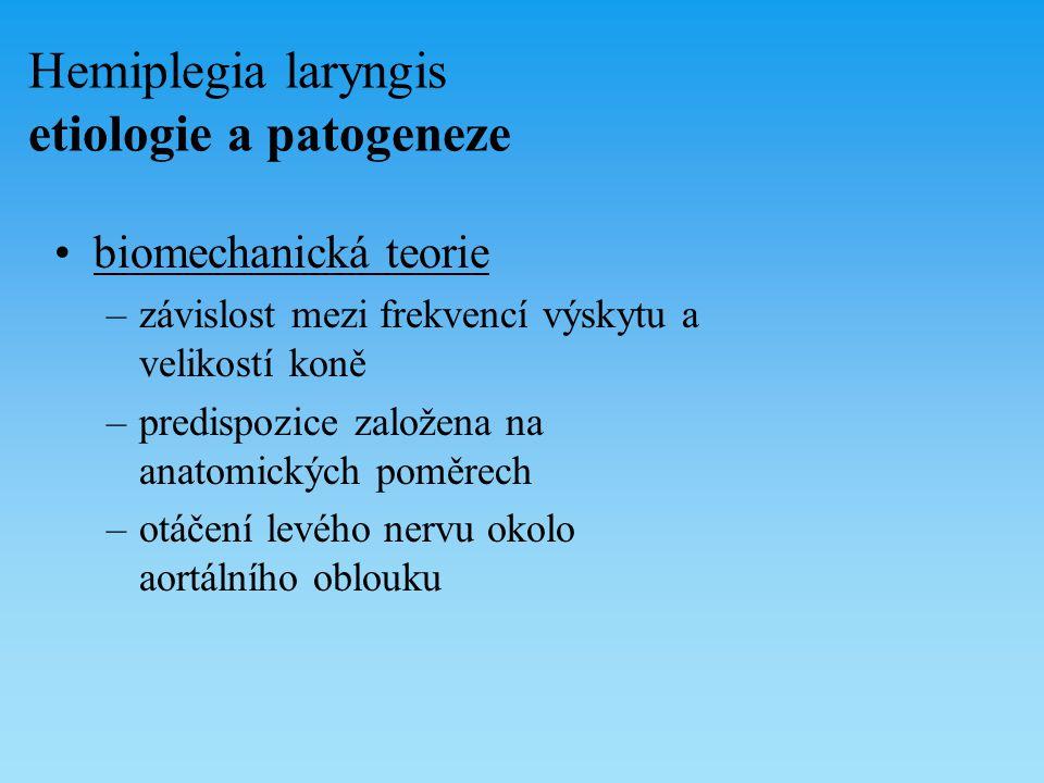 Hemiplegia laryngis etiologie a patogeneze