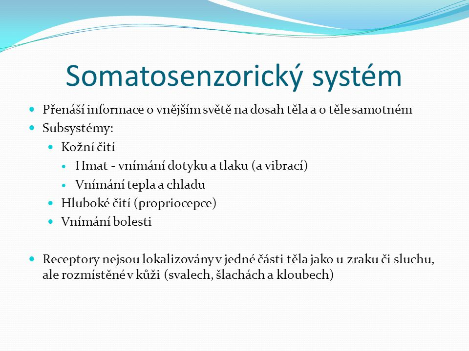 Somatosenzorický systém
