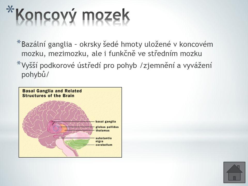 Koncový mozek Bazální ganglia – okrsky šedé hmoty uložené v koncovém mozku, mezimozku, ale i funkčně ve středním mozku.