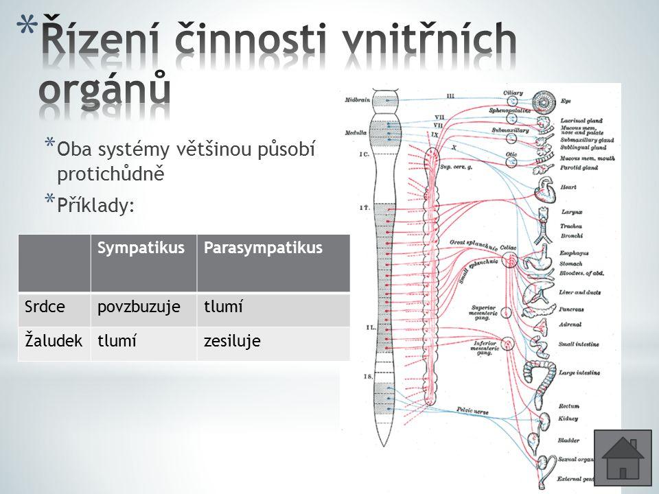 Řízení činnosti vnitřních orgánů