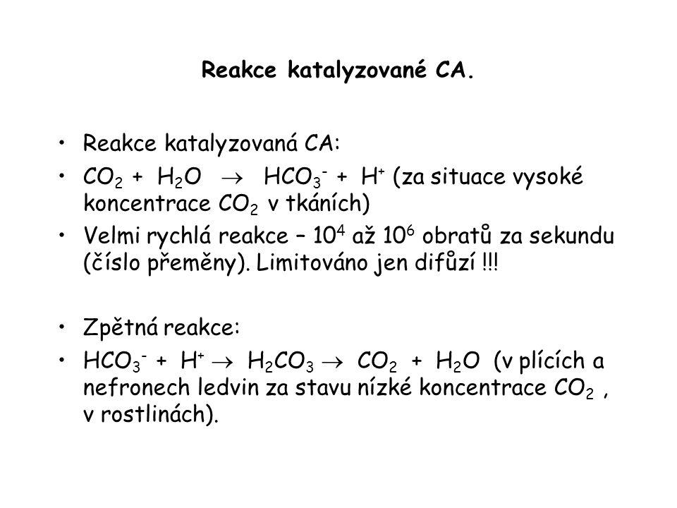 Reakce katalyzované CA.