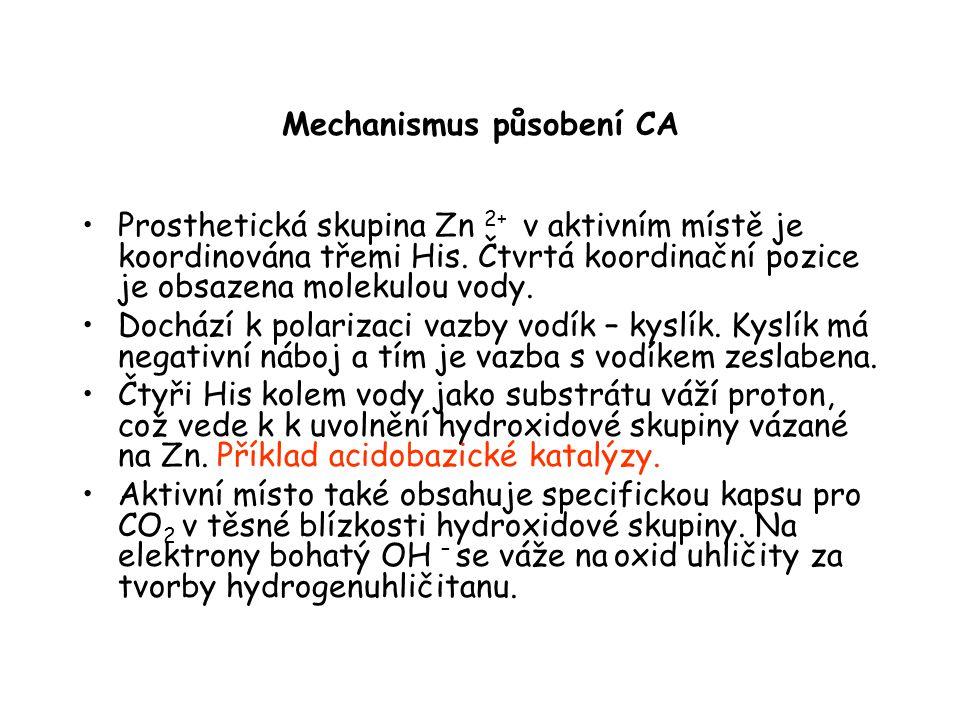 Mechanismus působení CA