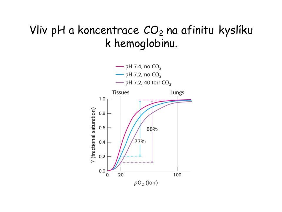 Vliv pH a koncentrace CO2 na afinitu kyslíku k hemoglobinu.