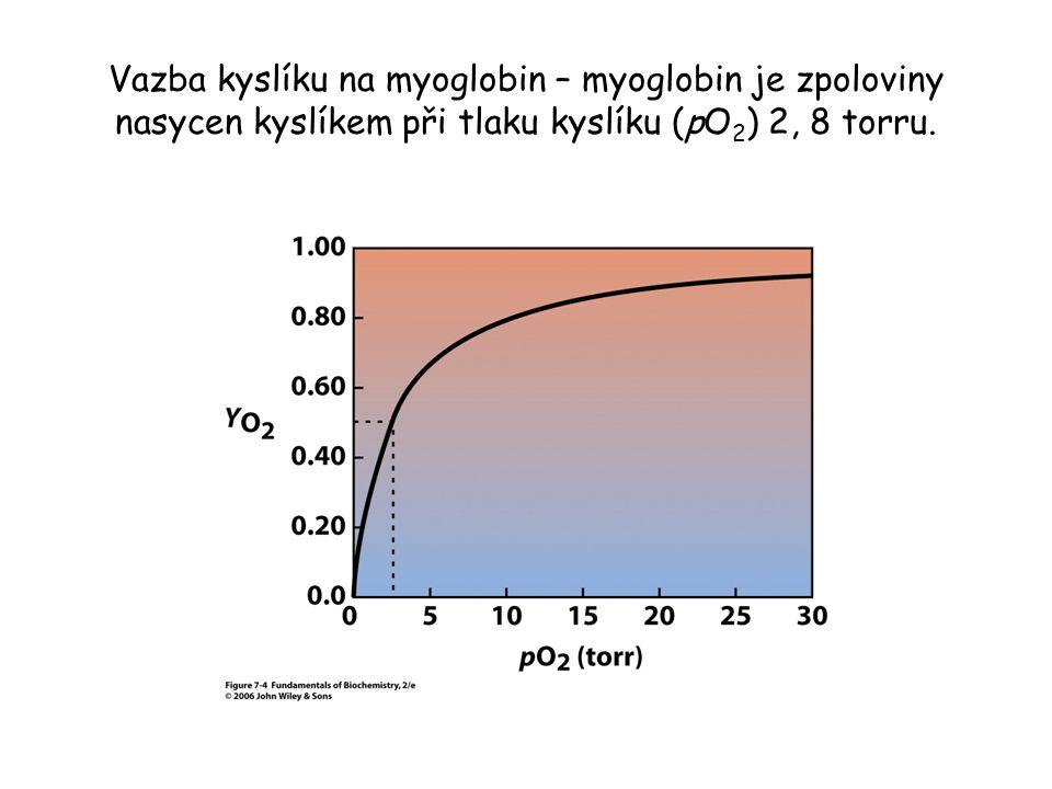 Vazba kyslíku na myoglobin – myoglobin je zpoloviny nasycen kyslíkem při tlaku kyslíku (pO2) 2, 8 torru.