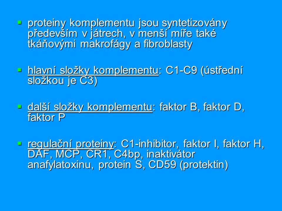 proteiny komplementu jsou syntetizovány především v játrech, v menší míře také tkáňovými makrofágy a fibroblasty