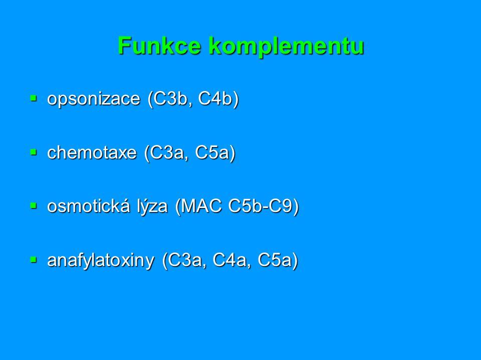 Funkce komplementu opsonizace (C3b, C4b) chemotaxe (C3a, C5a)