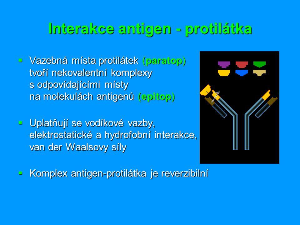 Interakce antigen - protilátka