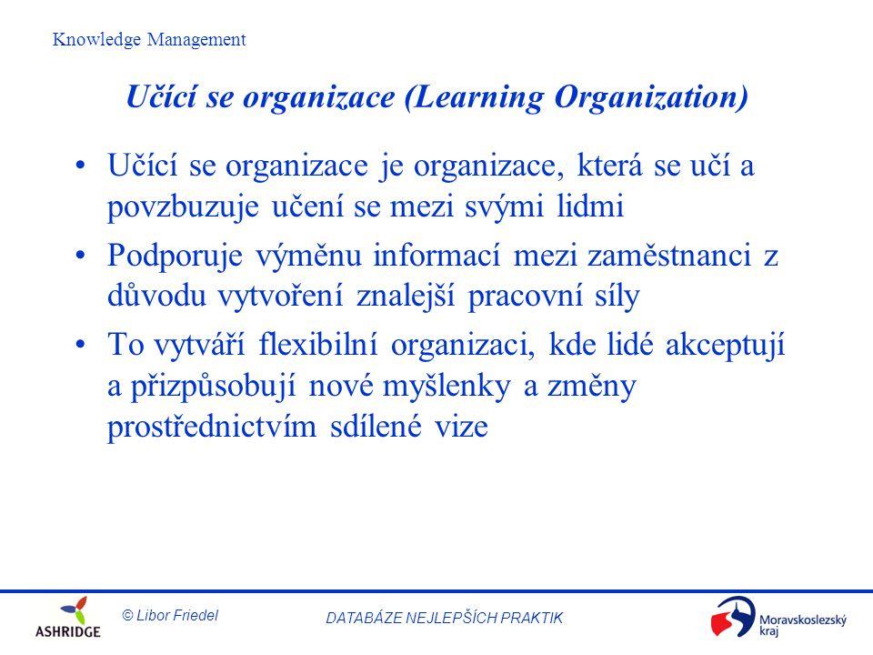 Učící se organizace (Learning Organization)