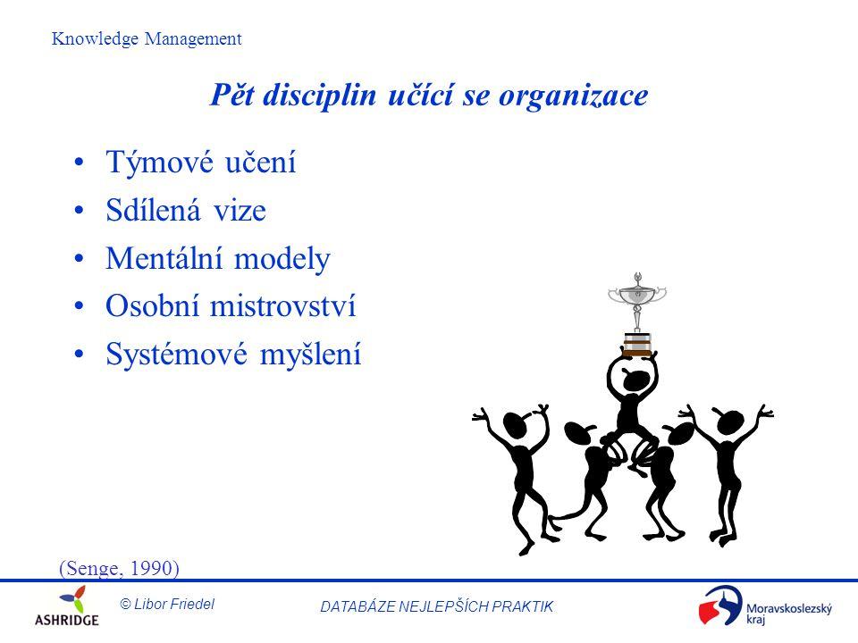 Pět disciplin učící se organizace