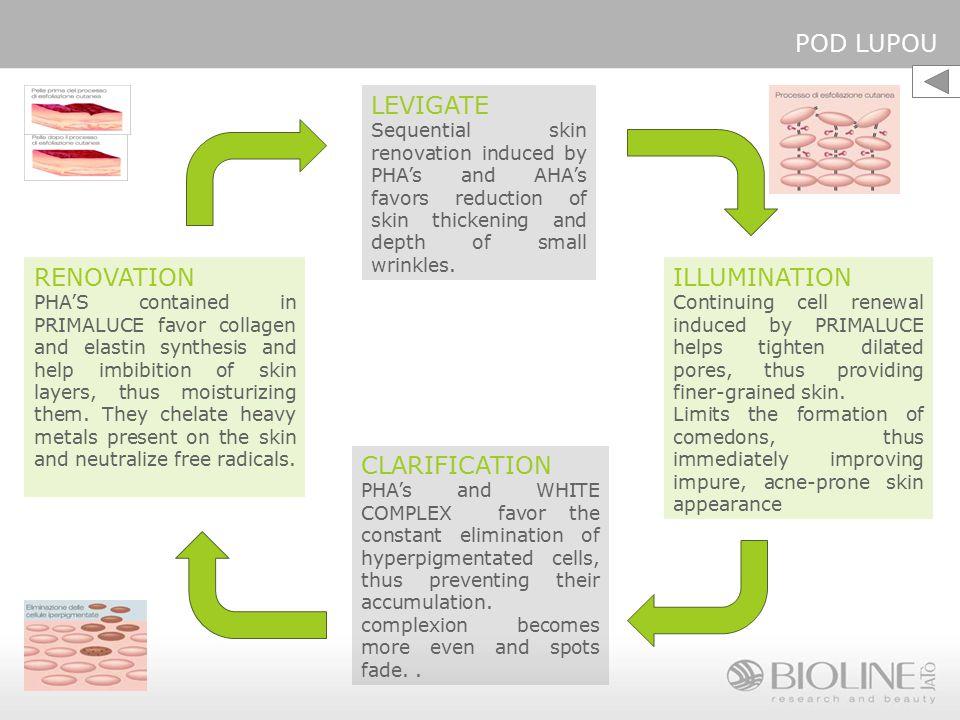 POD LUPOU LEVIGATE RENOVATION ILLUMINATION CLARIFICATION
