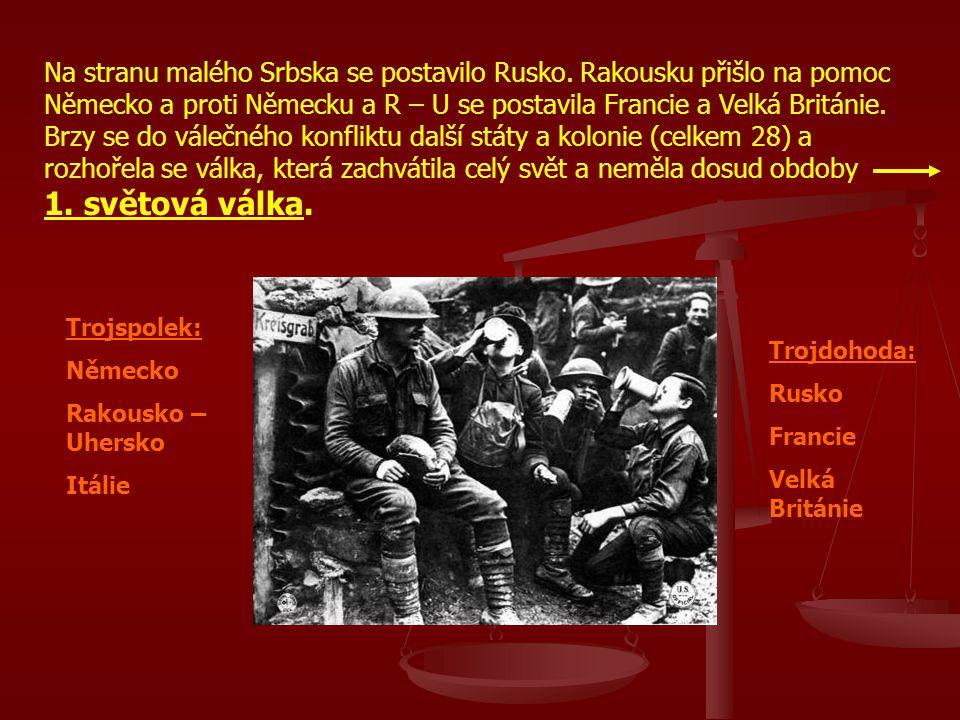 Na stranu malého Srbska se postavilo Rusko