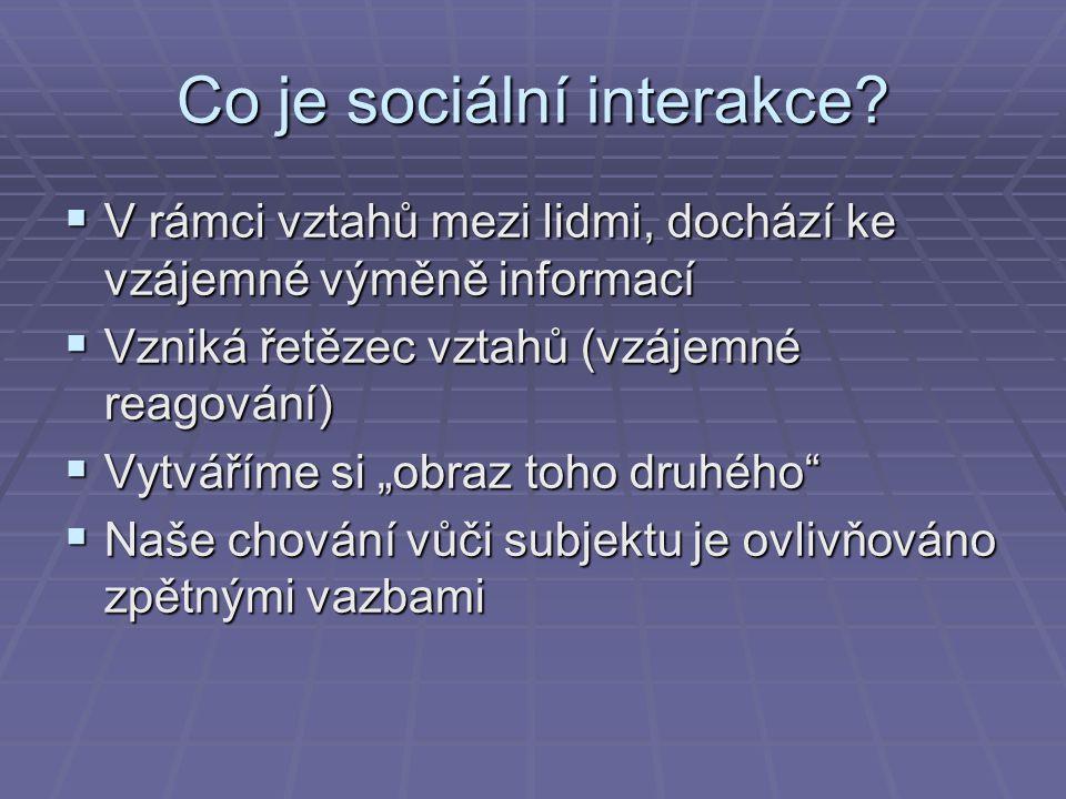 Co je sociální interakce