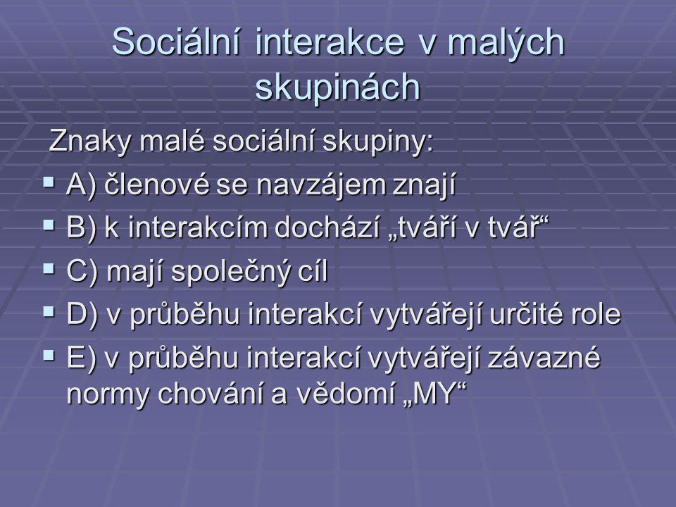 Sociální interakce v malých skupinách