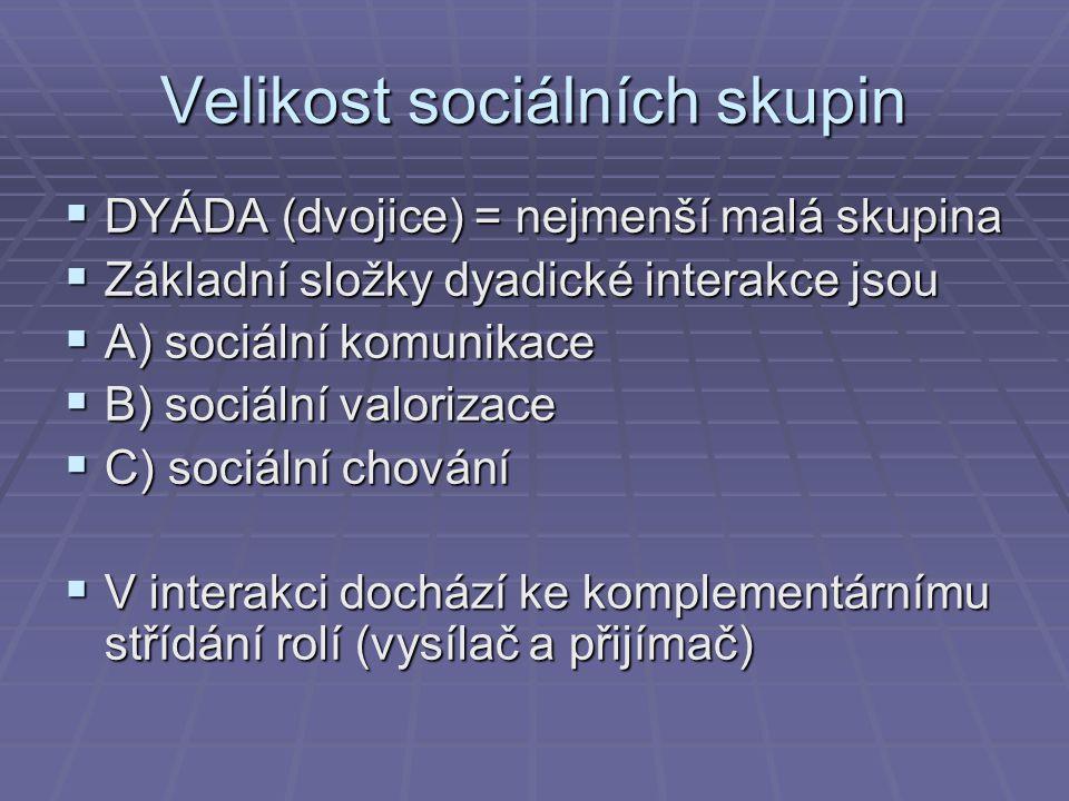 Velikost sociálních skupin