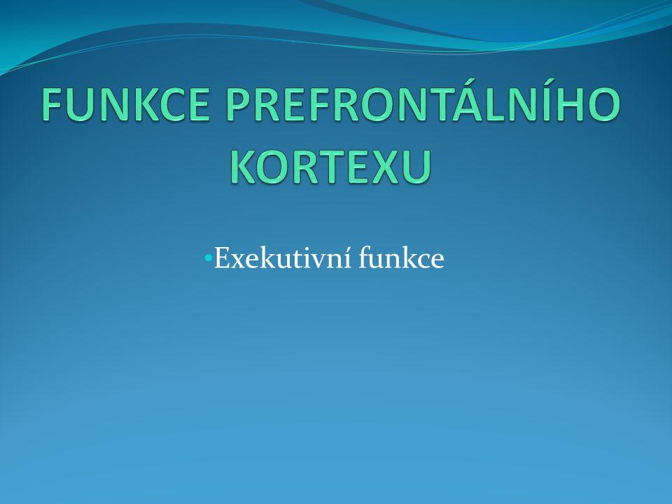 FUNKCE PREFRONTÁLNÍHO KORTEXU