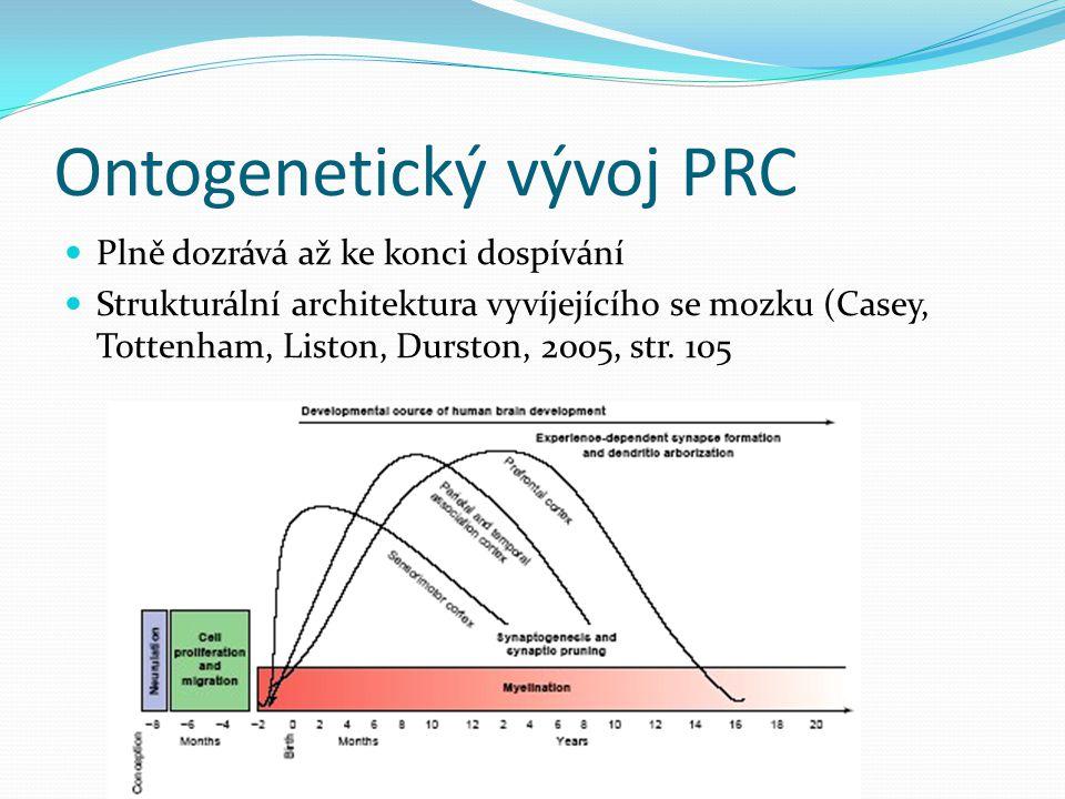 Ontogenetický vývoj PRC