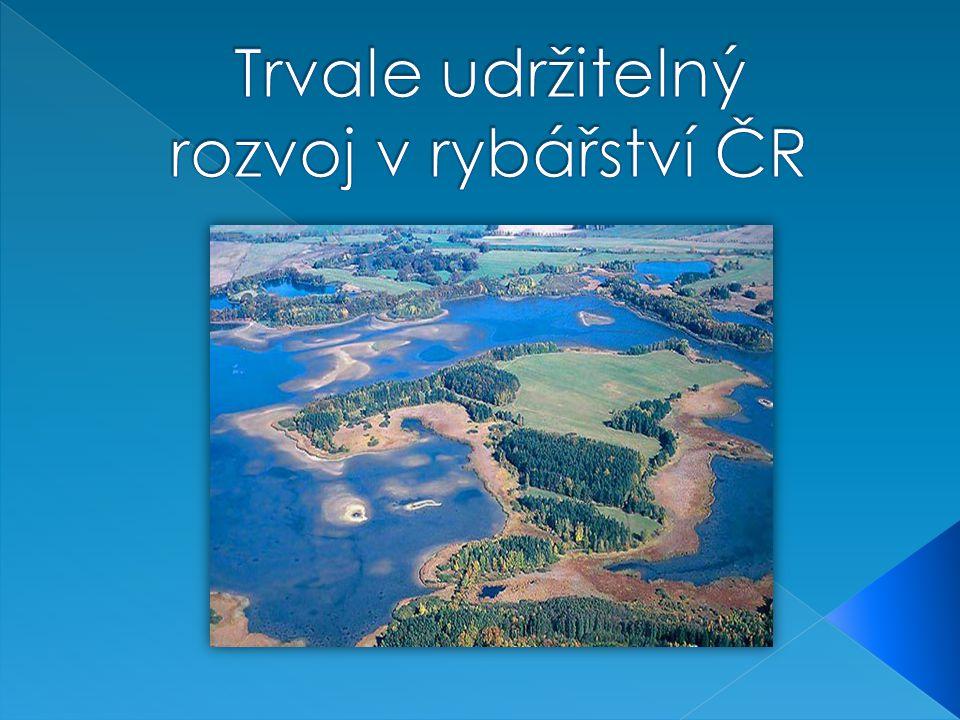 Trvale udržitelný rozvoj v rybářství ČR