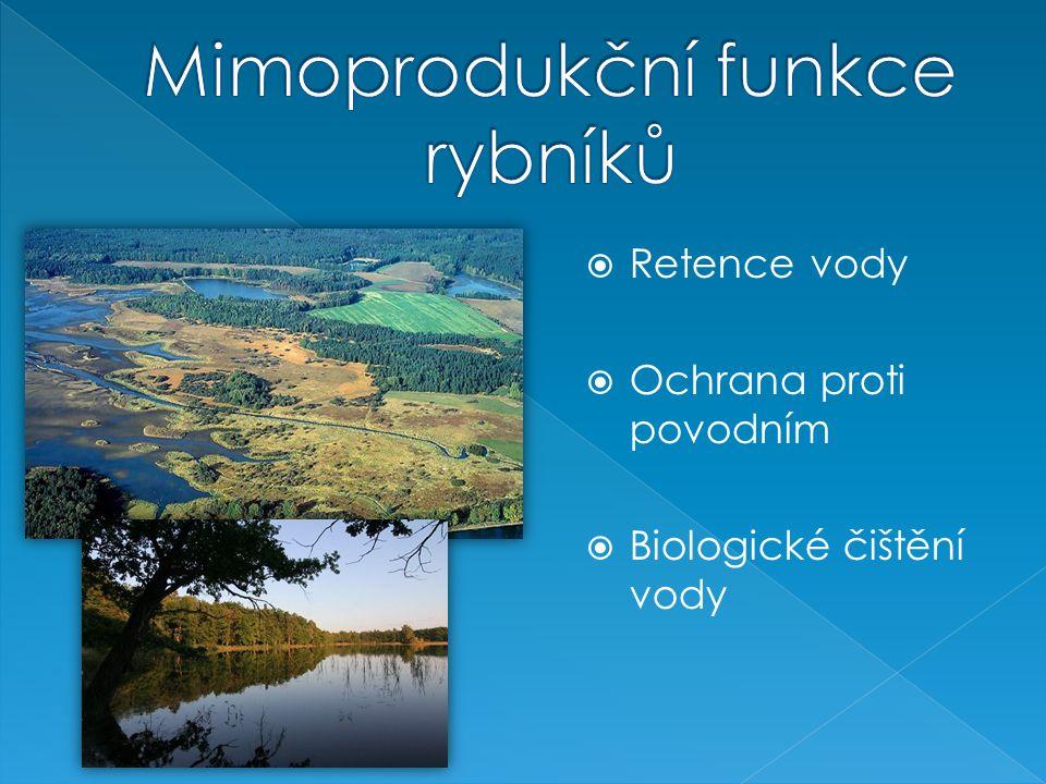 Mimoprodukční funkce rybníků