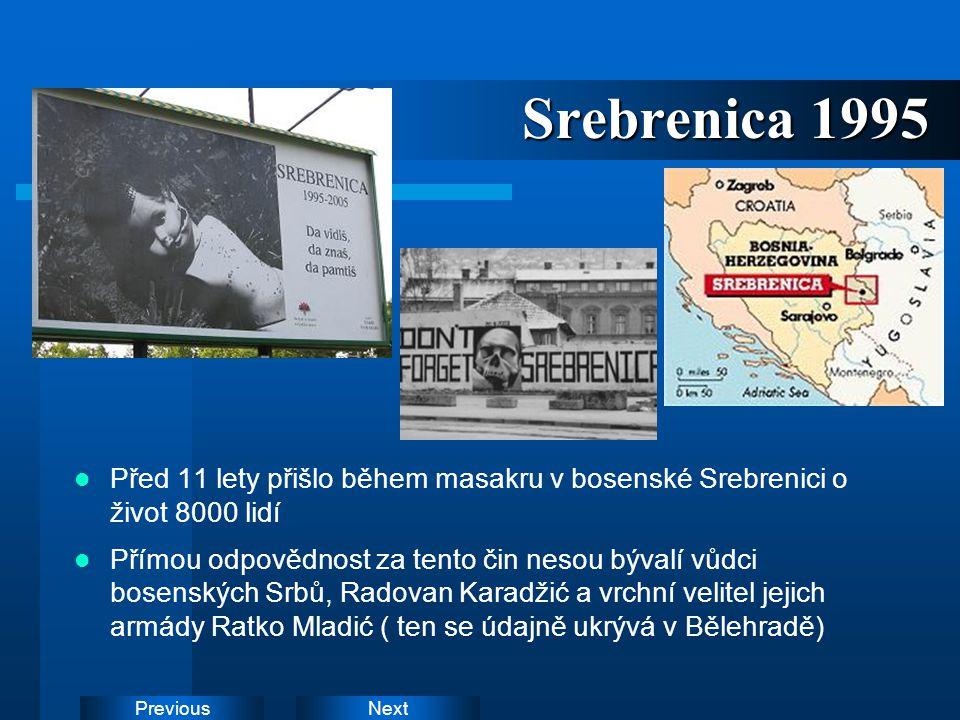 Srebrenica 1995 Před 11 lety přišlo během masakru v bosenské Srebrenici o život 8000 lidí.