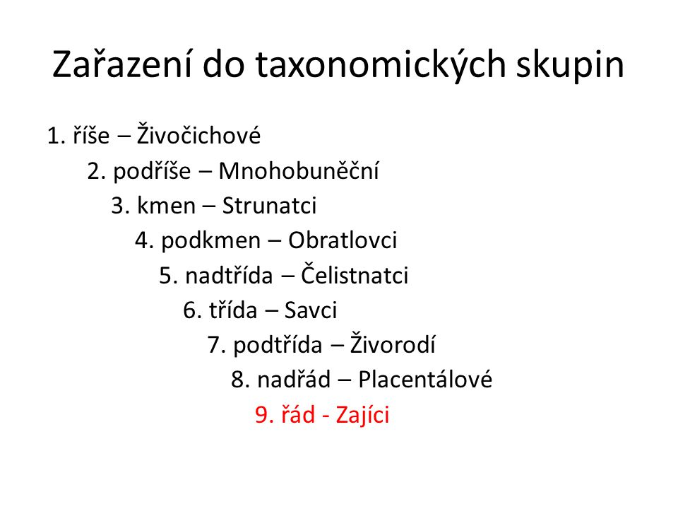 Zařazení do taxonomických skupin