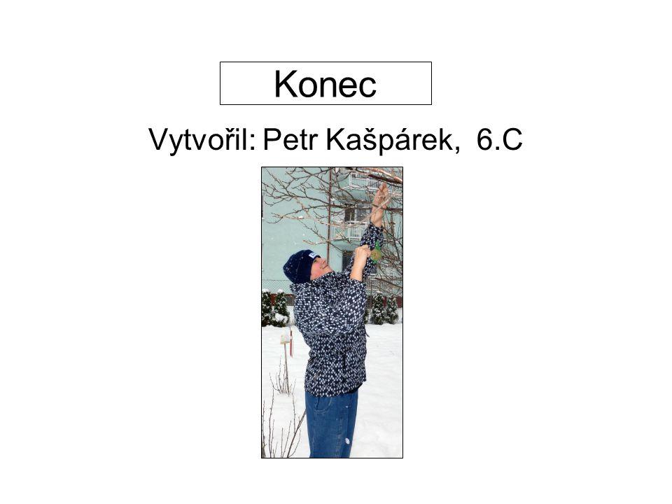 Vytvořil: Petr Kašpárek, 6.C