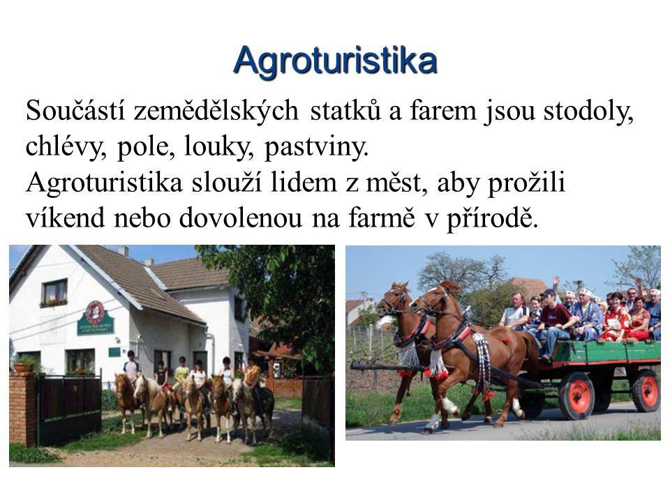 Agroturistika Součástí zemědělských statků a farem jsou stodoly, chlévy, pole, louky, pastviny.