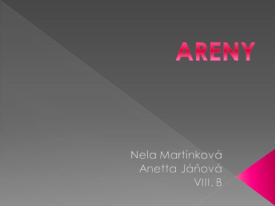 Nela Martínková Anetta Jáňová VIII. B
