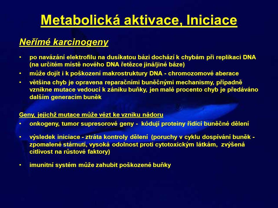 Metabolická aktivace, Iniciace