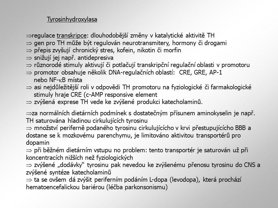 Tyrosinhydroxylasa