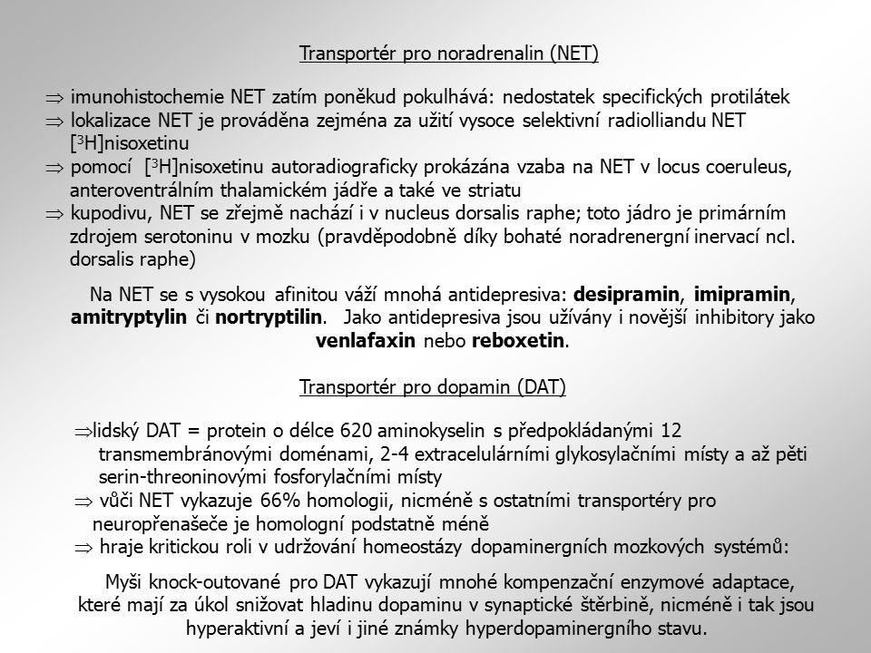 Transportér pro noradrenalin (NET)