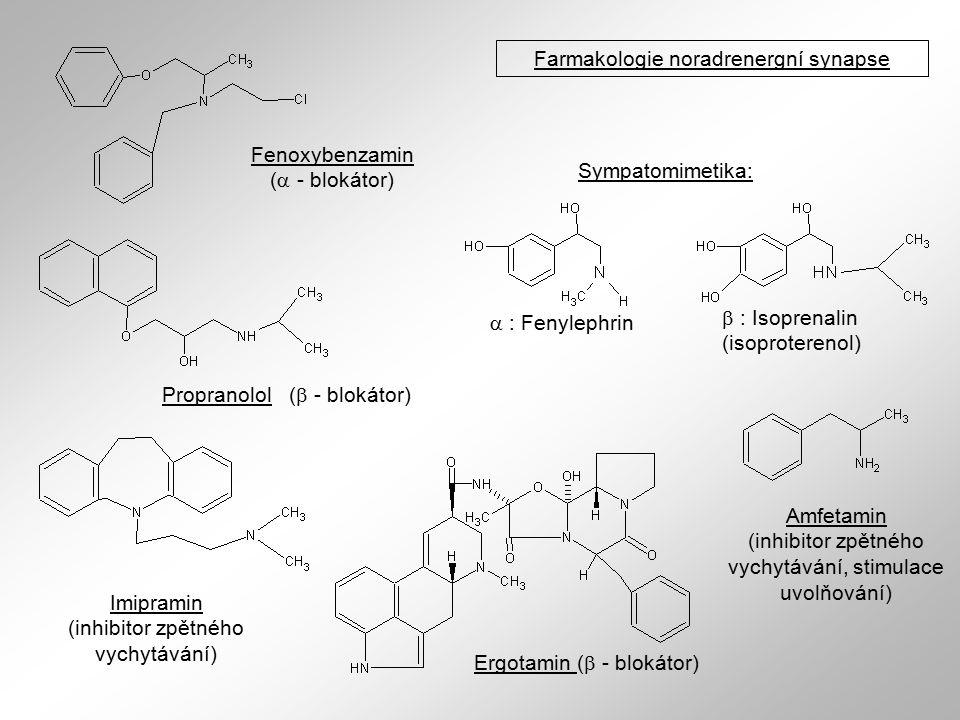 Farmakologie noradrenergní synapse