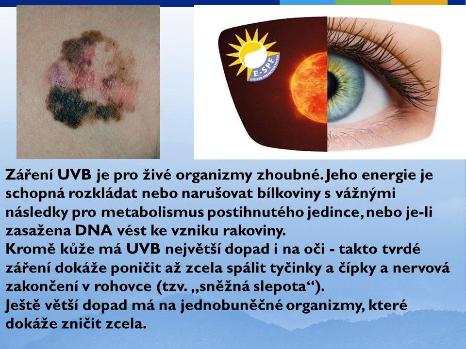 Záření UVB je pro živé organizmy zhoubné