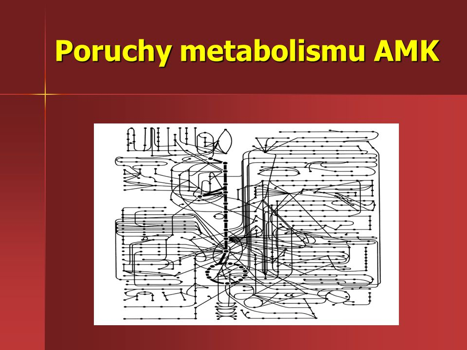 Poruchy metabolismu AMK