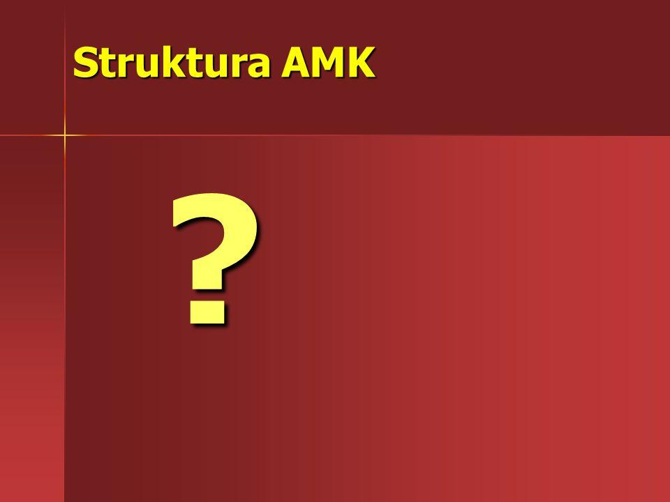 Struktura AMK