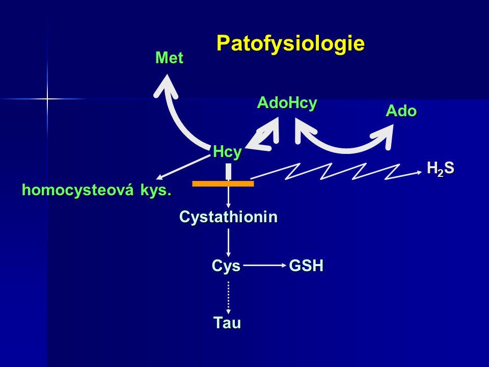 Patofysiologie Met AdoHcy Ado Hcy H2S homocysteová kys. Cystathionin