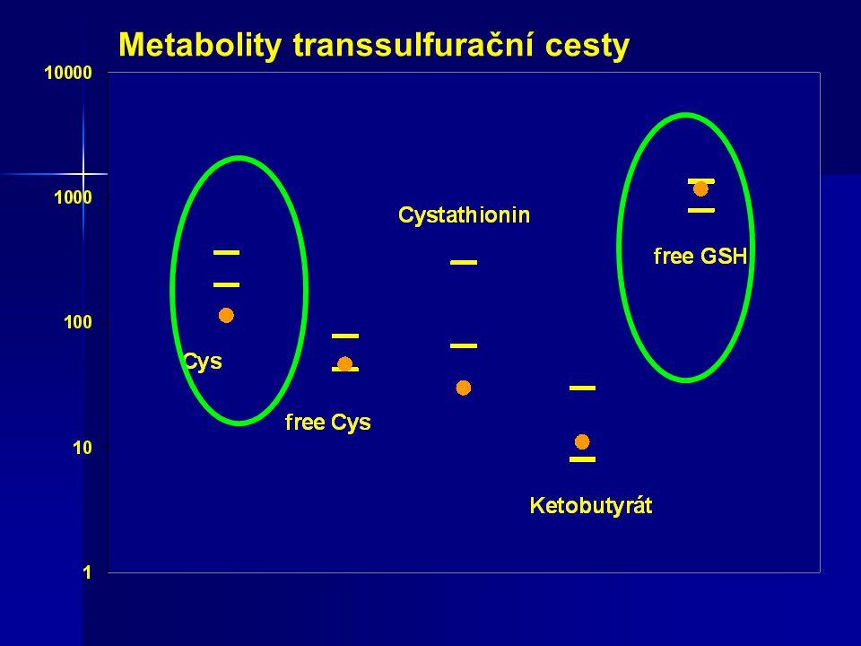 Metabolity transsulfurační cesty