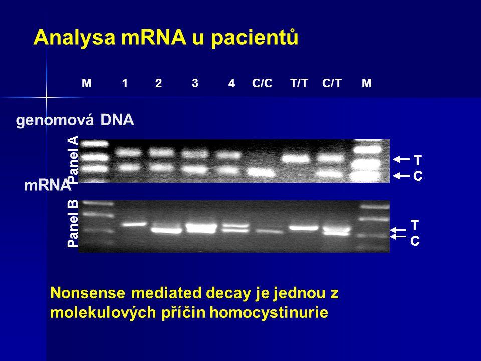 Analysa mRNA u pacientů