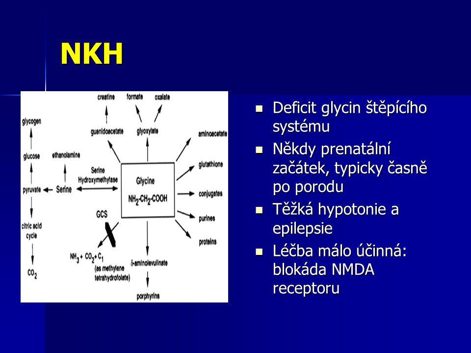 NKH Deficit glycin štěpícího systému