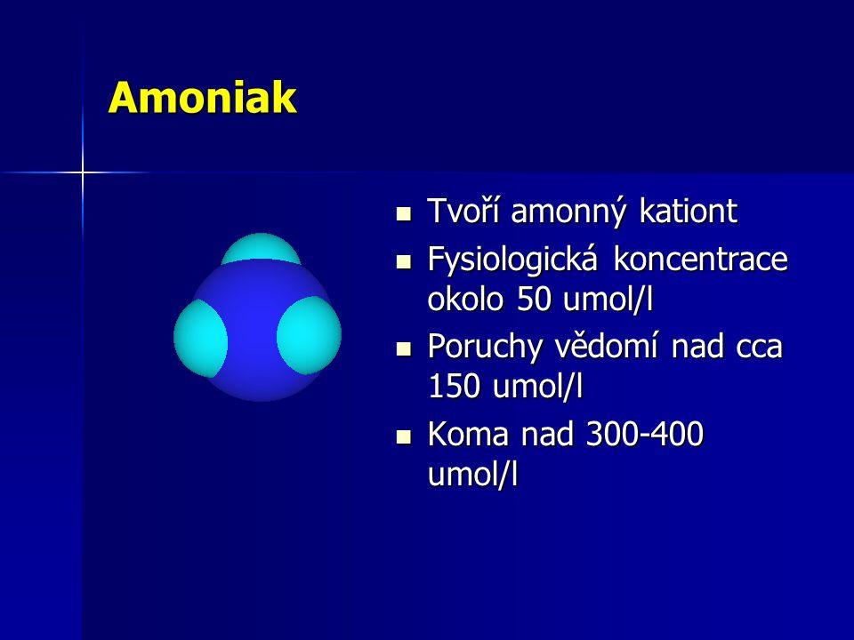 Amoniak Tvoří amonný kationt Fysiologická koncentrace okolo 50 umol/l