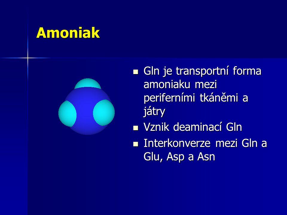 Amoniak Gln je transportní forma amoniaku mezi periferními tkáněmi a játry.