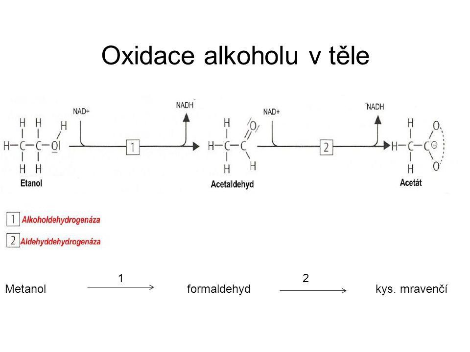 Oxidace alkoholu v těle