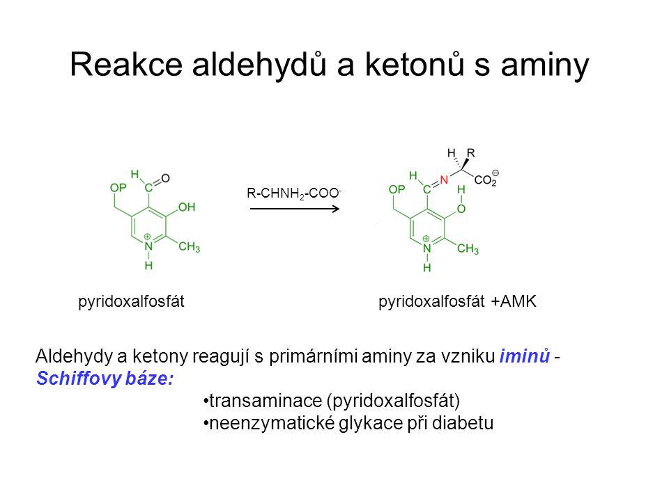 Reakce aldehydů a ketonů s aminy