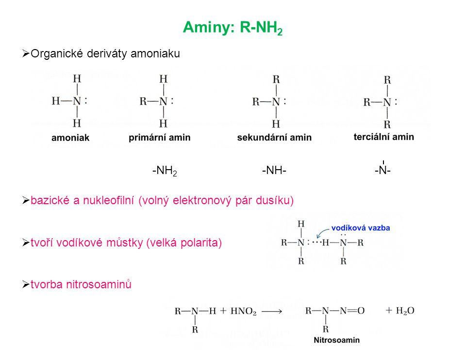 Aminy: R-NH2 Organické deriváty amoniaku