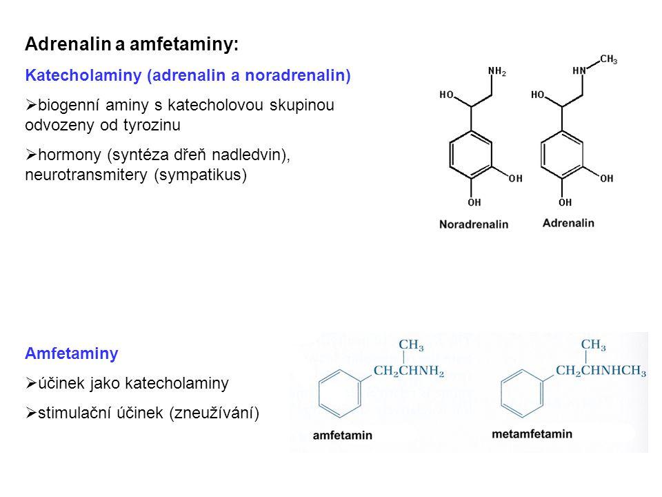 Adrenalin a amfetaminy: